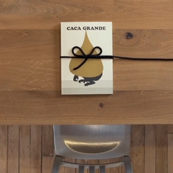 Caca Grande - the first in a series of unique children's books, collaboration of some the leading creative minds of our time. Produced, designed and published by Blok and Editorial RM.