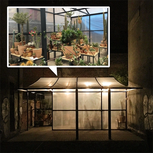 LA's Echo Park Cactus Store pops up in NYC. Surface Mag has a peek inside! They've built a temporary greenhouse and store on an empty Lower East Side lot sandwiched between two buildings.