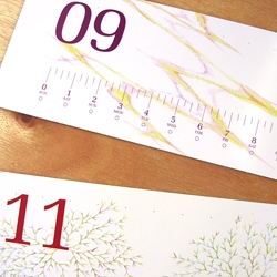 "2007 Calendar ""monosashi."" Bi-monthly calendar from decoylab that looks like a measuring stick."