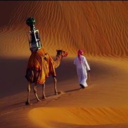 Google Streetview mounts the camera on a Camel! Explore Liwa with Google Maps from Google Arabia.