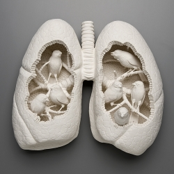Hand sculpted porcelain still lives by artist, Kate MacDowell.