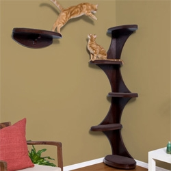 Interesting modern cat shelf/toy...