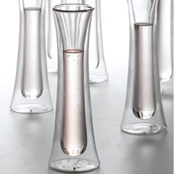 Beautiful modern champagne flutes. The Double-walled glass will keep your bubbly as cool as the parties you throw!