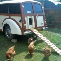With rising interest in urban and suburban chicken keeping, some folks are finding ingenious ways to create their own coops.