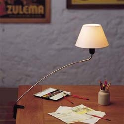 an odd lamp clip lamp, though i find it extremely charming!