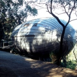 It's not a zeppelin airship that has crash-landed in the Australian forest - it's Bellemo & Cat's Cocoon House!