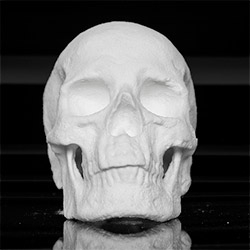 Ecce Animal - A skull made of Compression molded Cocaine (street sourced) and Gelatin by Diddo.