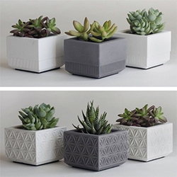 Nystrom Goods makes small concrete and wooden planters