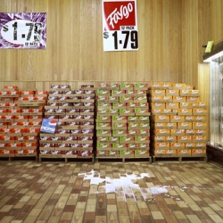 """In photgrapher Brian Ulrich's on-going project """"Copia"""" he takes a look at the affect of """"patriotic consumerism"""""""
