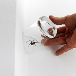 """Cornered"" by James Laurie, London helps you trap household pests even when they're in a corner!"