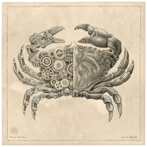 Steeven Salvat's Mechanical/Biological Crustacean Study series! Imagine if crabs, lobsters, horseshoe crabs and more were as intricate as watches inside!