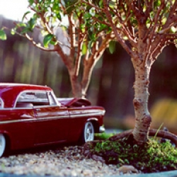 "CrashBonsai is the creation of John Rooney, an artist who is torn between the desire to create and destroy. Recently, he has been making bonsai plants, with model cars and trucks which he has  smashed and melted, to create ""CrashBonsai."""
