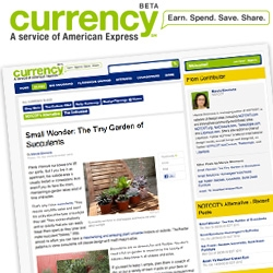 NOTCOT has a column over at Amex's CURRENCY!!! This week we share our adoration of Succulents!