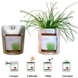 POCKET GARDEN - for the lazy gardener... and easier to gift than potted plants... tear it open, add water, and poof! desktop garden.
