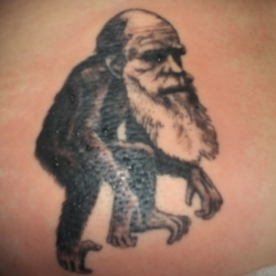 A gallery charting the evolution of Charles Darwin inspired tattoos