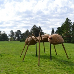 A wonderful collection of larger than life garden creatures by sculptor David Rogers. NOW through September 8 at the Morton Arboretum in Lisle, Illinois.