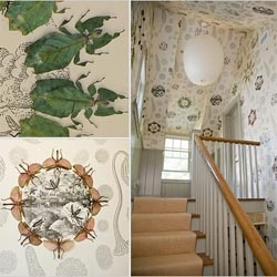 Brad Ford used preserved jungle nymphs and stick insects to decorate the mudroom of the 2007 Hamptons Cottages and Gardens Idea House.  I love the bugs, but not so keen on filling my home with dead stuff!