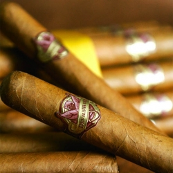 "The term ""Devil's Weed"" was used by the Spanish Inquisition to discourage  the use of tobacco.  Based on this rich history, Rockit Science Agency took an old world approach to the design and development of this new cigar line."