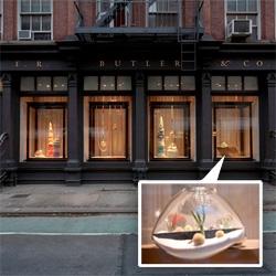 Incredible window display -  Litill Ltd. Terrariums at E.R Butler & Co