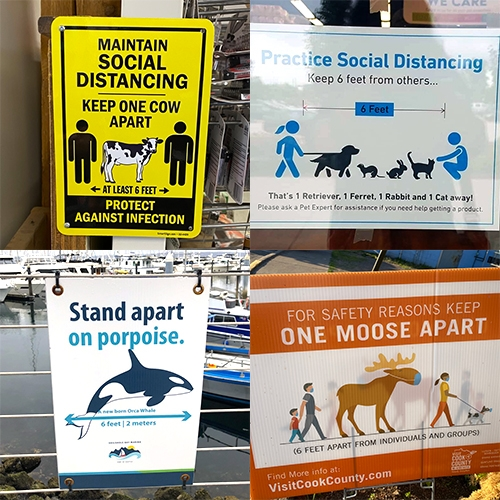 Great twitter thread from Rebecca Boyle sharing unique Social Distancing signage - love how many use animals to help people understand what 6ft/2m looks like.