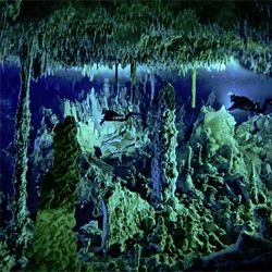 Diving Bahamas' blue holes (flooded inland caves) is number 13 on National Geographic's 20 ultimate adventures.