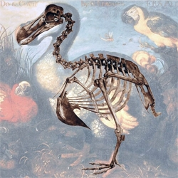 "i can barely contain my excitement about this dutch scientific weblog on ""expeditie dodo"".  yup, its that sweet."