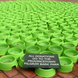 Denny Camino's installation of 500 water-filled dog bowls has raised $4,500 for the Provincetown, MA  dog park .   Passersby toss money into the bowls, whose shapes shift nightly.
