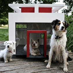 Dog mansions available in the antebellum-style Alabama, contemporary-approved Cubix, Ikea-like Lönneberga, and the fanciful Fairytale, Made to order from premium materials like varnished wood and break-proof window glass.
