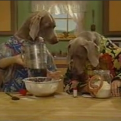 Trippy video of William Wegman's Weimaraners baking bread.  From the Sesame Street vault.  God I love that show!