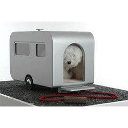 latest urban dog accessory via coolhunter