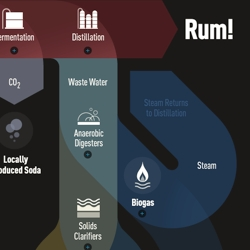 DonQ's rum making process is amazingly green. This interactive infographic shows how it works.