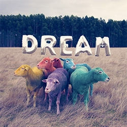 Gray Malin Dream Series - a fun photographic series of multicolored dyed Australian sheep.