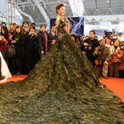 The $1.5 million Peacock dress unveiled at the wedding expo held in Nanjing, capital of east China's Jiangsu Province. The wedding dress decorated with 2,009 pieces of peacock feathers took eight handicraftsmen two months to finish.
