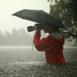 35 beautiful examples of rain photography.