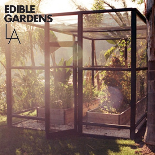 Edible Gardens LA builds, plants and sustains organic vegetable gardens. Founded by Lauri Kranz, singer-songwriter turned go-to edible gardening consultant Inspiring gallery of edible gardens around Los Angeles.