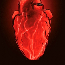 This heart glass electra lamp is a perfect choice whether you are into physiology or simply have a penchant for the macabre.