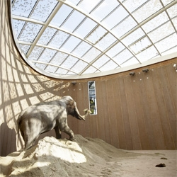 Foster + Partners is currently finishing the Elephants House at the Copenhagen Zoo. A nice structure covers a space designed from the observation of elephants behavior.