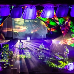 Enjoy The Multisensory Experience Of An Animal Collective Live Show