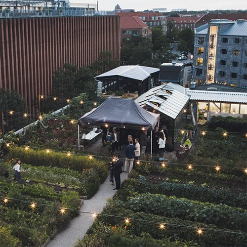 Ignant takes us inside the beautiful Stedsans Rooftop Farm Restaurant in Copenhagen.
