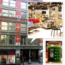 My favorite NOTCOT spots in NY ~ guest post on Mulberry's blog!