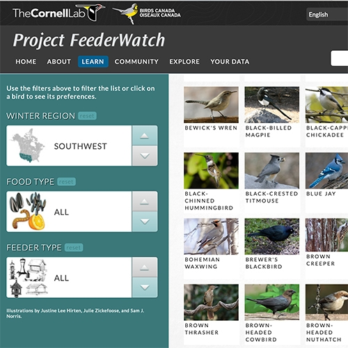 Project Feeder Watch - A list of almost 100 common feeder birds and cross referenced what they like to eat and where they like to eat it.