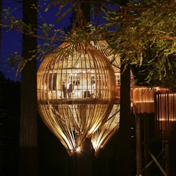 Yellow Treehouse Restaurant by Pacific Environments Architects. The tree-house concept is reminiscent of childhood dreams and playtime, fairy stories of enchantment and imagination.