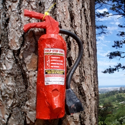 Problem: how to reduce the wild fires that ravage Table Mountain every summer. Solution: install wooden fire extinguishers that are completely useless. It's not as dumb as it sounds…