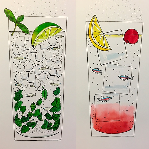 Lovely illustrations by Kanta Yokoyama - Fishy cocktails, beautiful insects, lizards and more!
