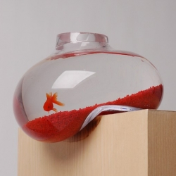 Distorted Aquarium by Psalt Design.