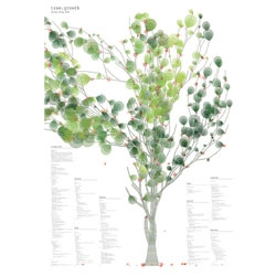 Munich designer Christian Flaccus's amazin pring using Jer Thorp's tree.growth source code.