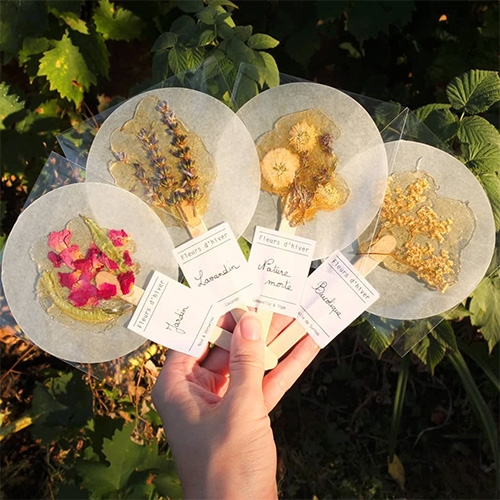 "Fleurs d'Hiver (winter flowers) - are beautiful ""soothing infusions blending herbal tea and honey"" on popsicle sticks!"