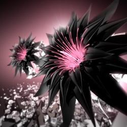 Gravure Magazine is featuring a video collaboration with Viktor & Rolf Flowerbomb.