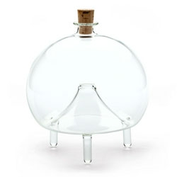 Elegant glass fruit fly trap ~ fill it with wine, and they fly in the bottom unable to escape.