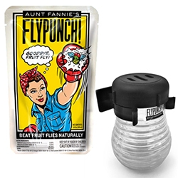 Aunt Fannie's FlyPunch! is scientifically engineered to attract and kill fruit flies. Sure you could also use wine/vinegar/etc - but the fun branding and simplicity of instructions is quite nice.